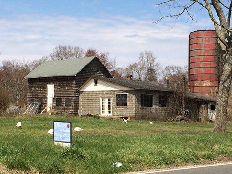 Environmental Club Works to Revitalize Local Farm
