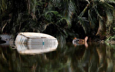 Puerto Rico, Post Hurricane Maria
