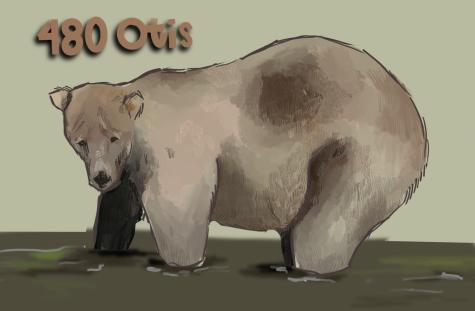 Fat Bear Week 2021